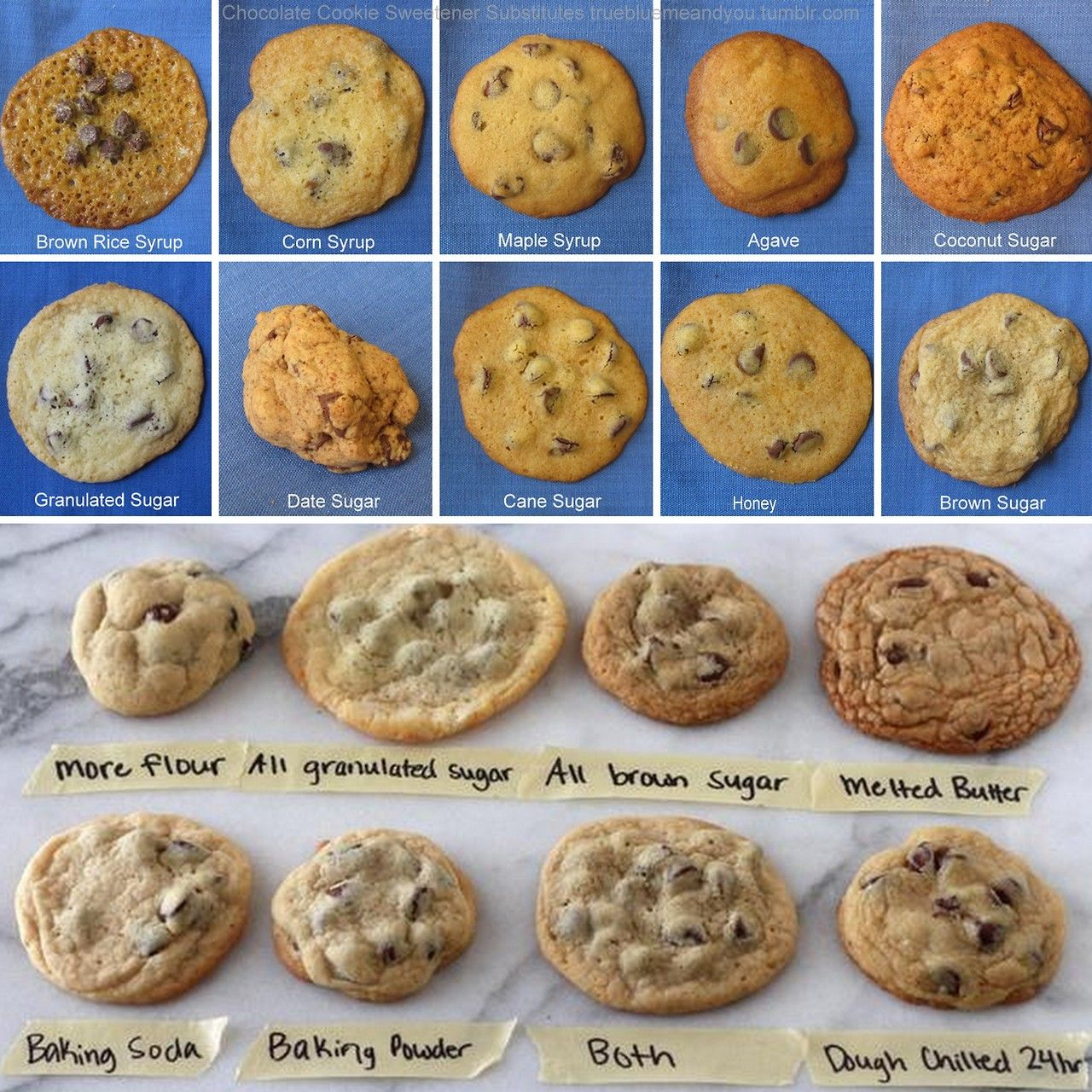 Testing For The Best Chocolate Chip Recipe Top Photo Group