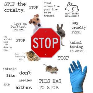 Stop Animal Testing,Poster - against-animal-testing Fan Art ...