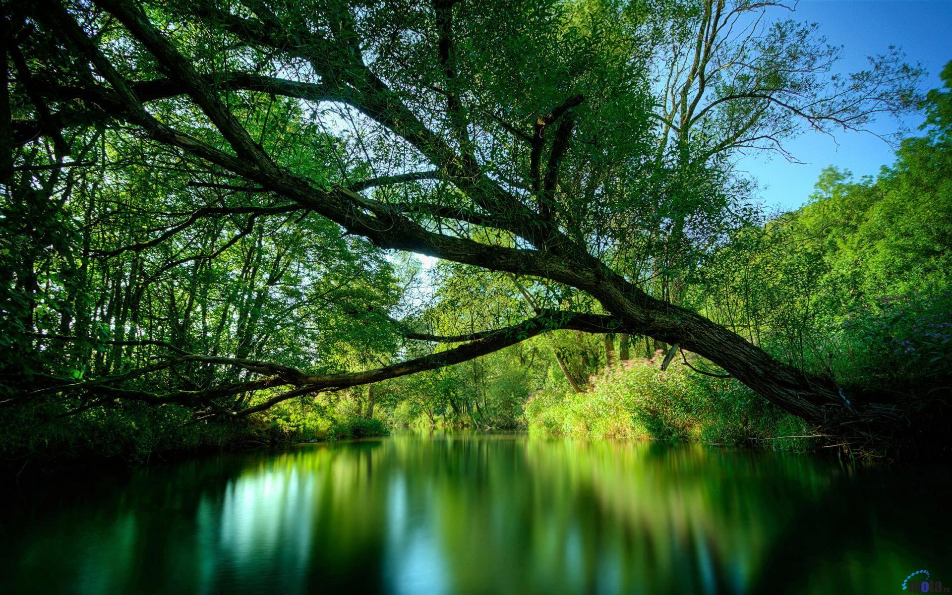 Telechargement En Cours Paysage Fond Ecran Paysage Belle Nature