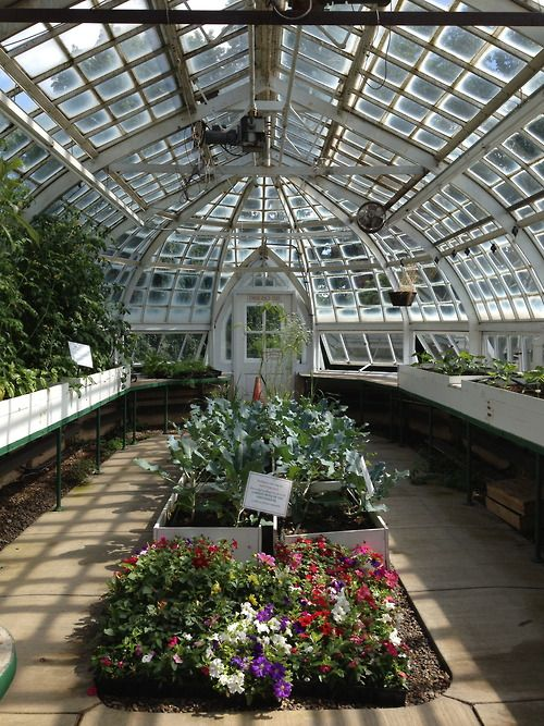 Victorian Greenhouse At The Frick Pittsburgh Pa