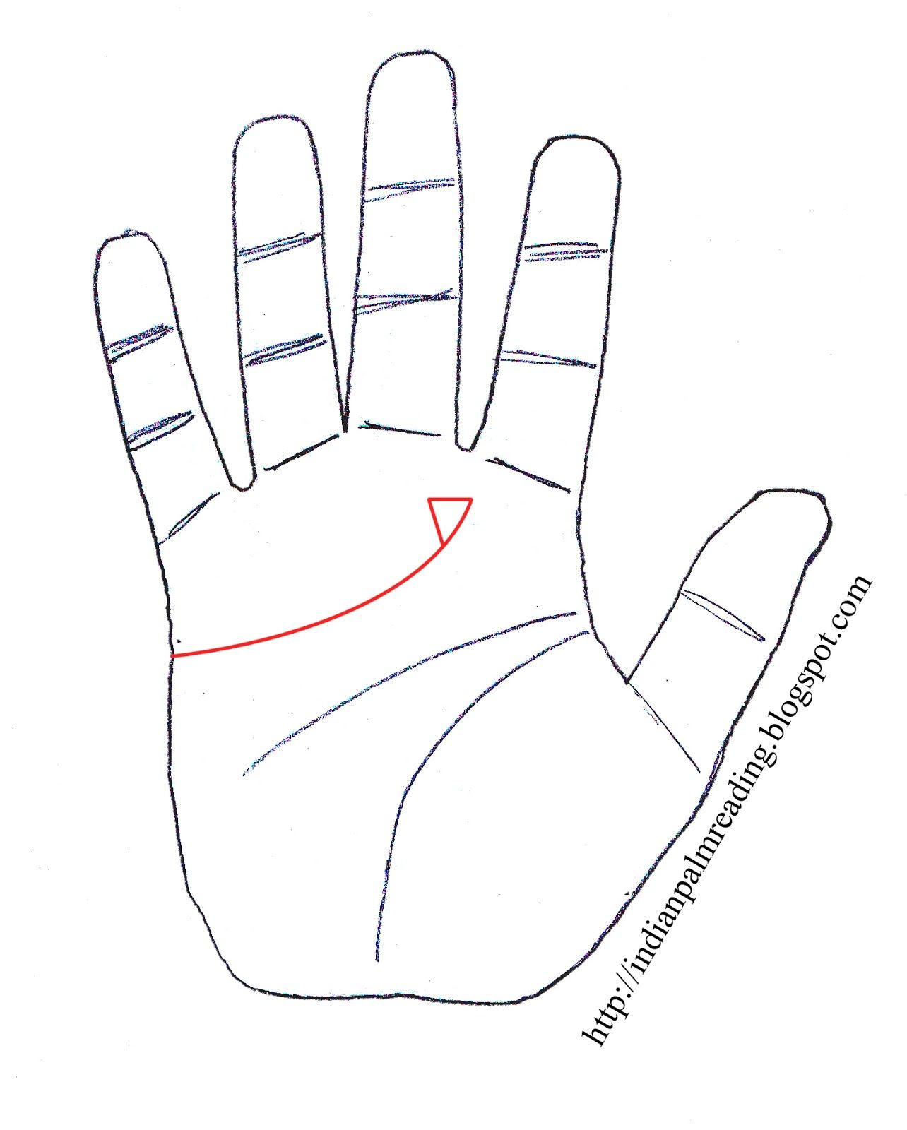 Indian Palmistry - Read Articles on Marriage, Life, Sun, Fate ...