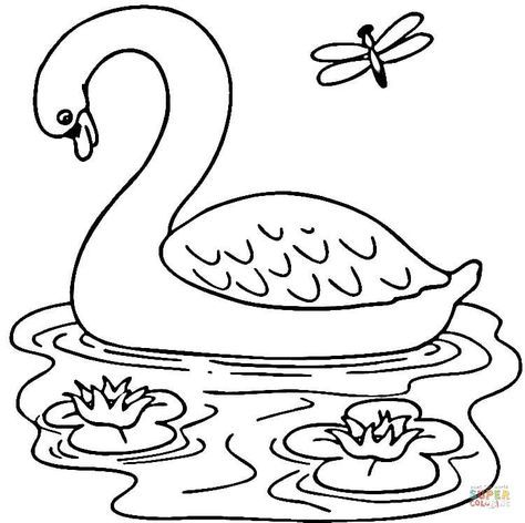 Swan In The Lake Coloring Page Jpg 750 747