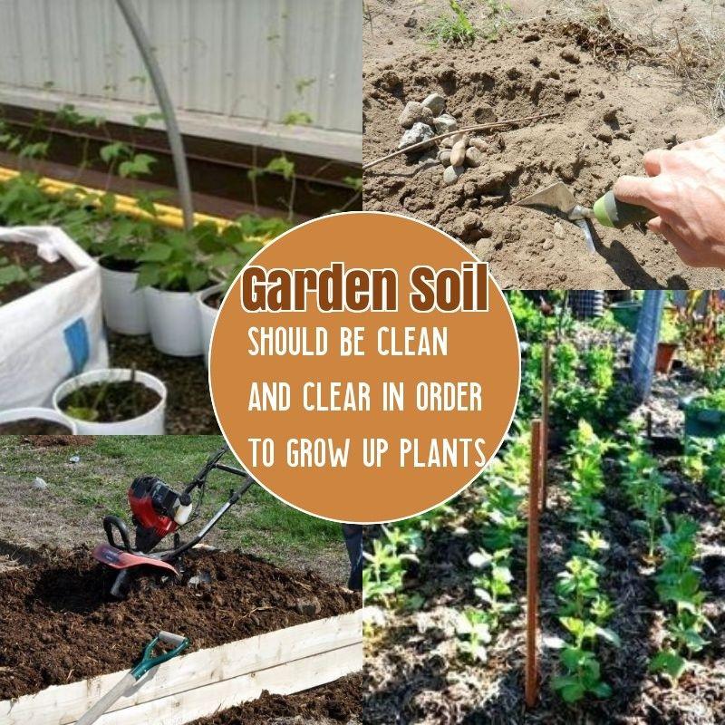 8910cba210b7884aa15b38f2fcfc1f78 - How To Prepare Soil For Next Year Gardening