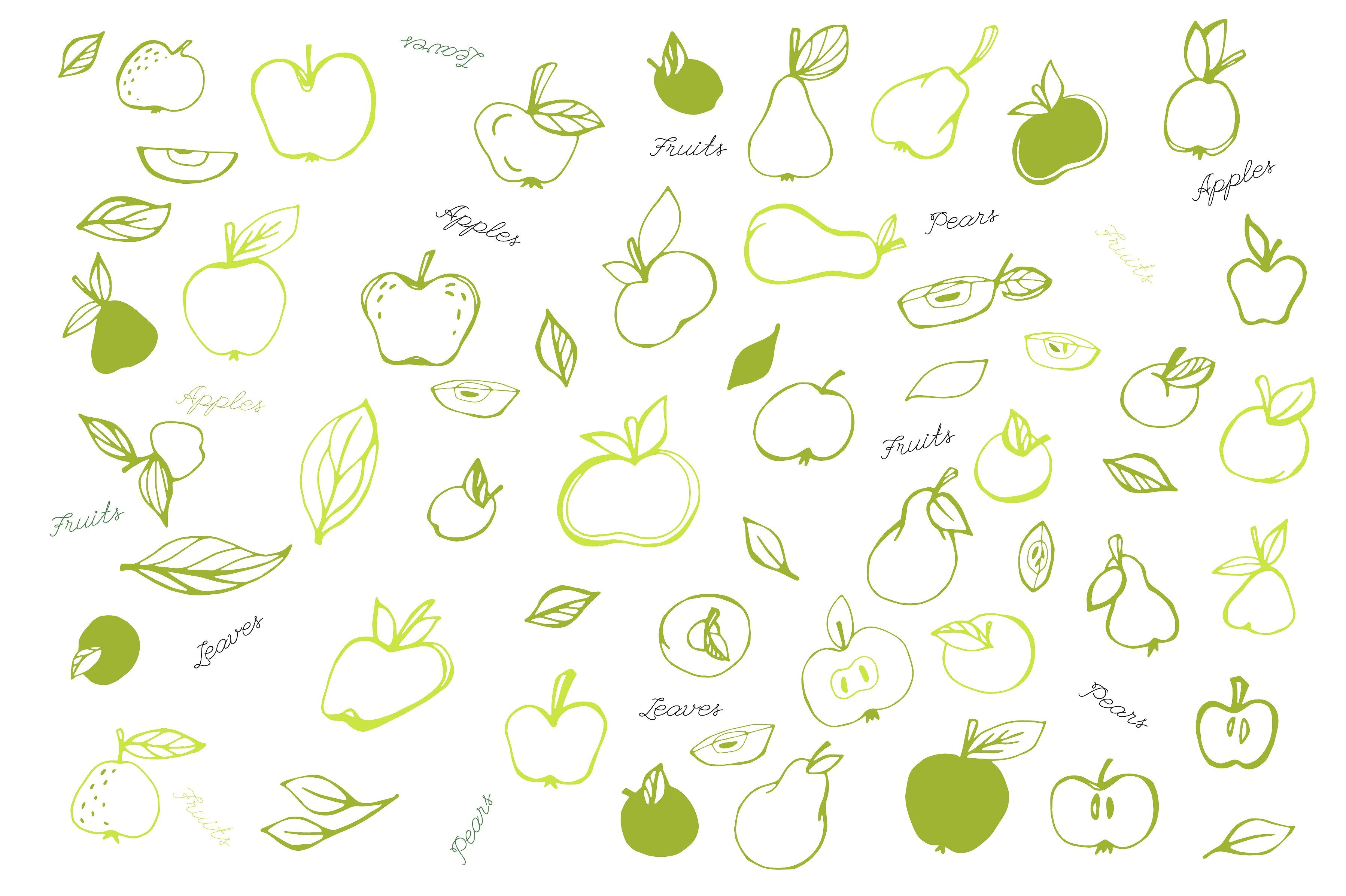 Apple Orchard vector collection Graphic design tutorials