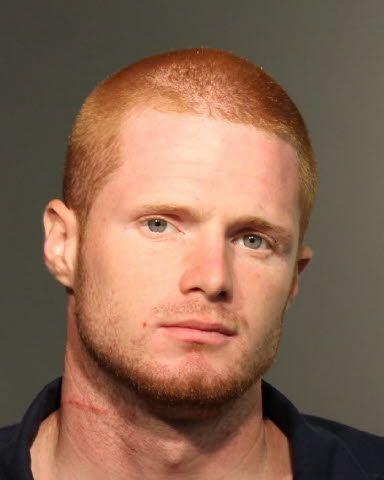 Dale Wright Seminole County, FL Arrest Information Date:06/19/2014