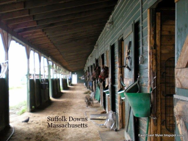 Visiting my friends horses at Suffolk Downs MA