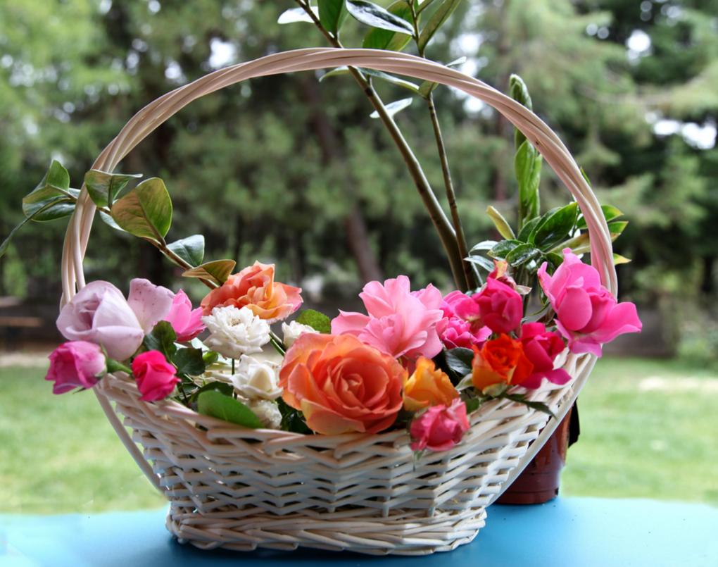Гифы цветы фото макро в корзинках