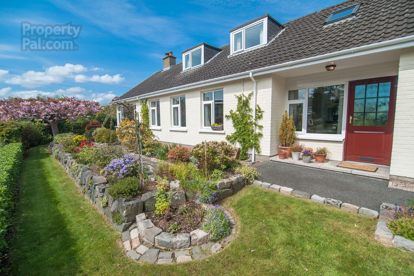 2a Marmont Park Belfast Small Garden Design Belfast Garden Design