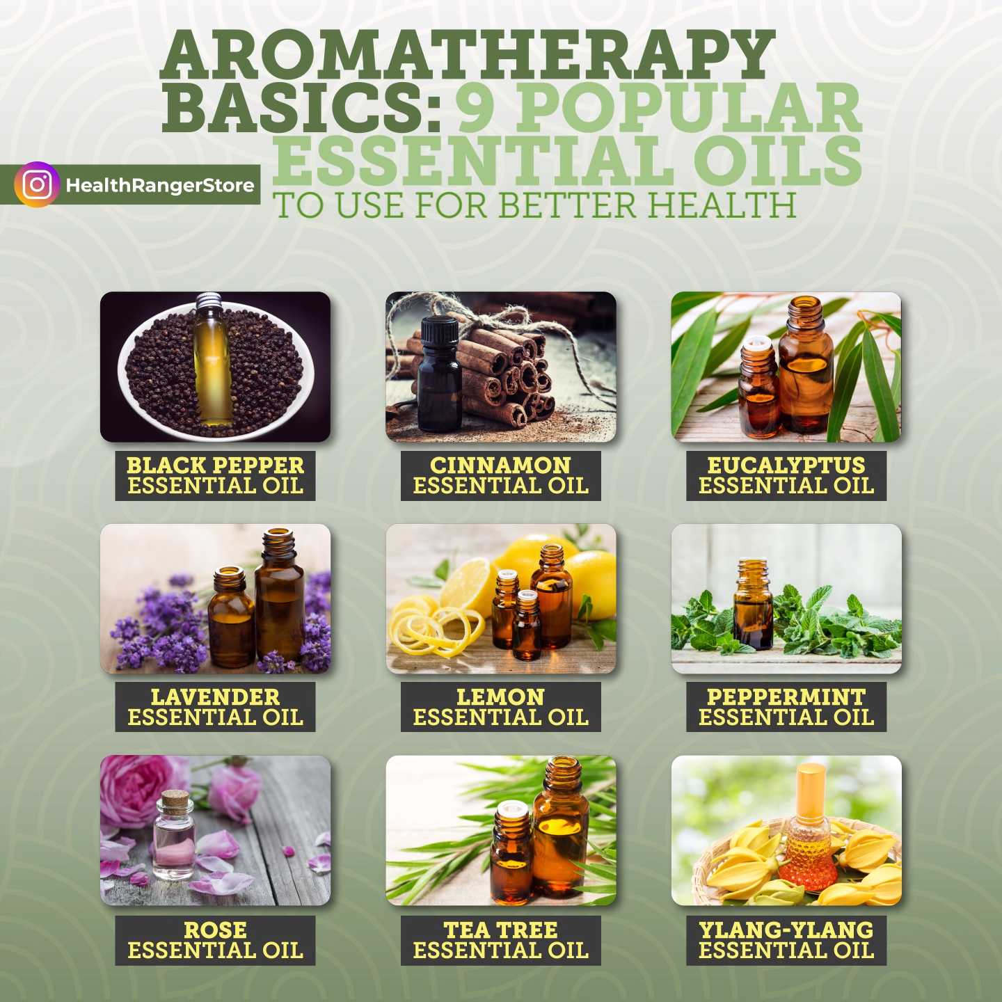 The benefits that aromatherapy offers range from physical