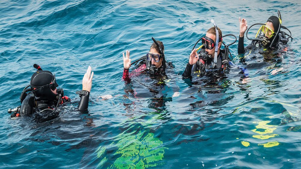 What is a PADI Divemaster Certification? Training