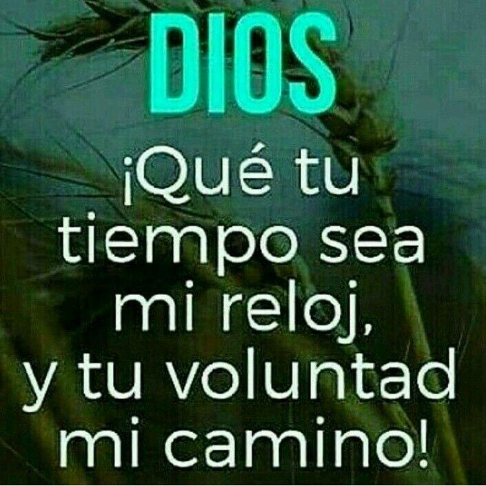 Pin De Orli Elizondo En Sueño God Dear God Y Faith In God