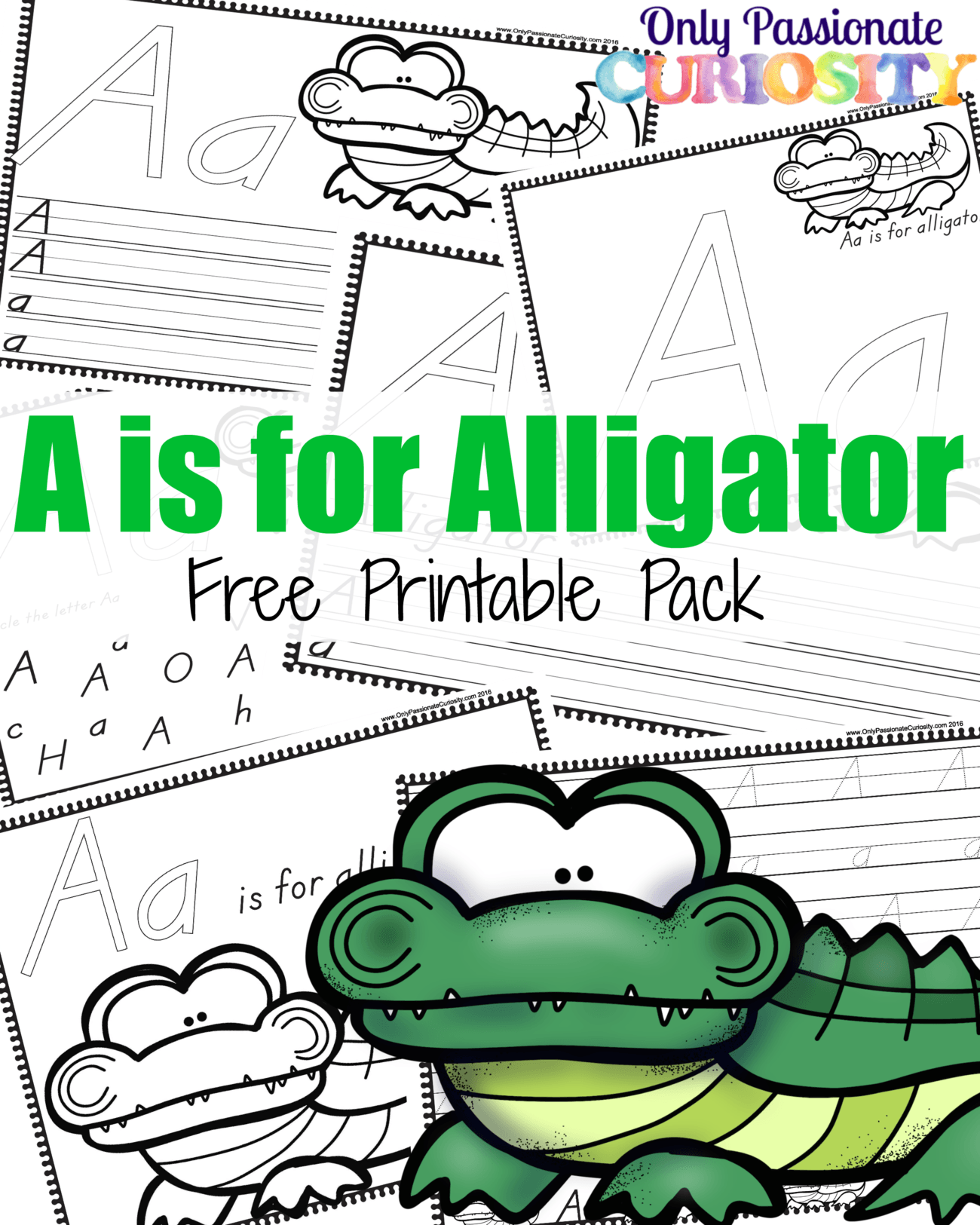 A Is For Alligator Abcs For Me