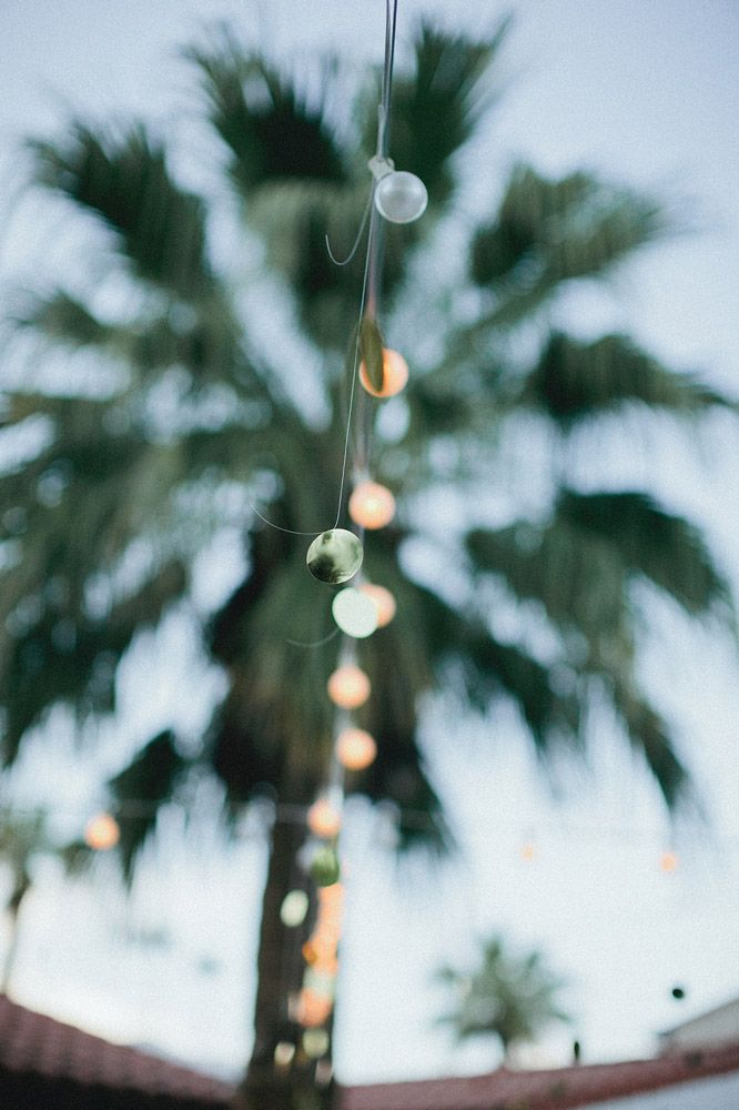 palm tree, summer outdoor dining, string lights