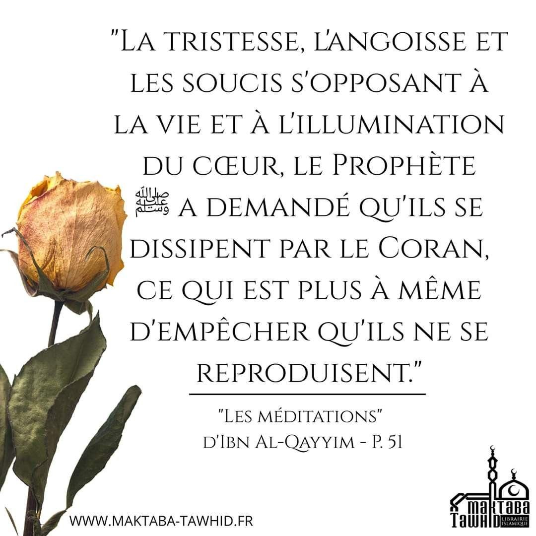 Epingle Par Thiero Ba Gafoure Sur Islam Hadith En Francais Amour Islam Rappel Islam
