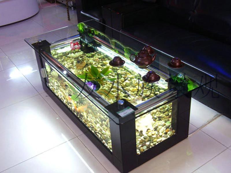 Beautiful Coffee Table Aquariums 19 For The Pets