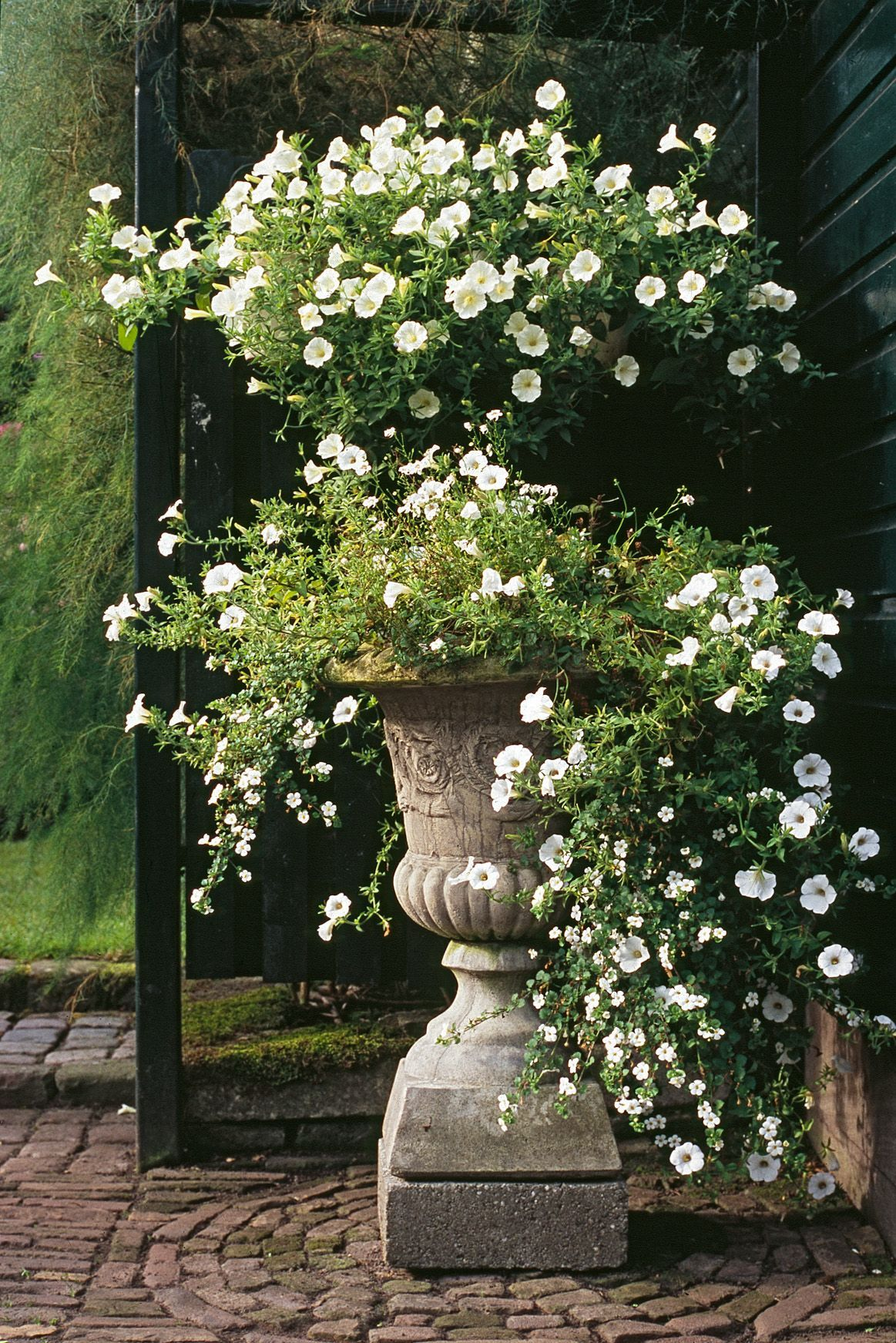 30+ Pretty Front Door Flower Pots For A Good First