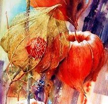 Moudru Marie Claire Fleurs Botanicheskie Illyustracii