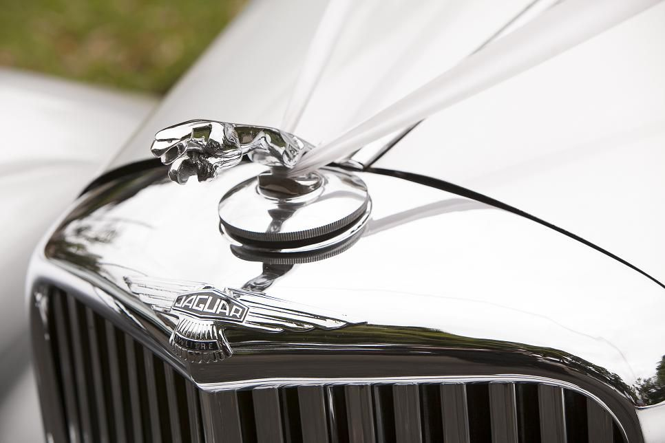 close up picture of our wedding car.  company : Angel Classic Cars