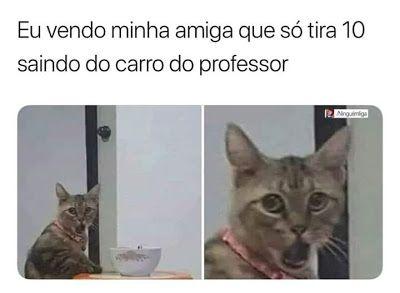Amiga Que So Tira 10 Em 2020 Meme Engracado Memes