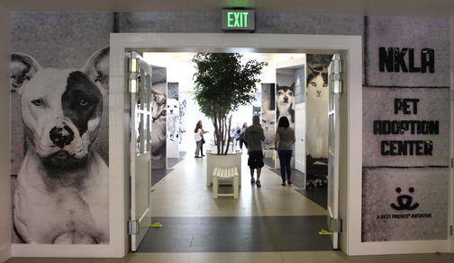 Nkla Pet Adoption Center Adopt A Pet Los Angeles Pet Adoption Center Pet Hotel Pet Boarding