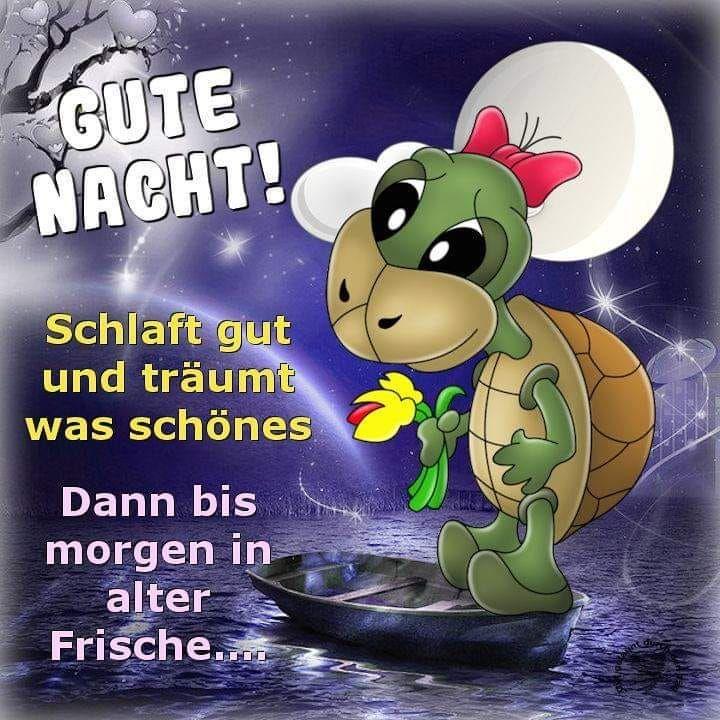 Gute Nacht Geschichte Süß Gästebuch Bilder - - #