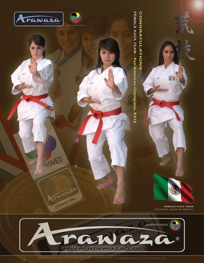 Japanese Karate Porn 23