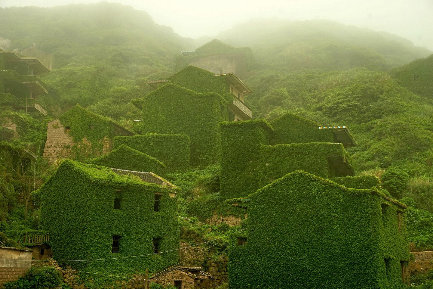 Creeping vines and other flora have enveloped a small, formerly inhabited fishing village on Shengshan Island roughly 40 miles east of Shanghai, which is part of the Shengsi Islands, a chain of islands in China's Zhejiang province. The village along the northern bay of Shengshan Island was abandoned after its residents, mostly fishermen, left in the early 1990s.
