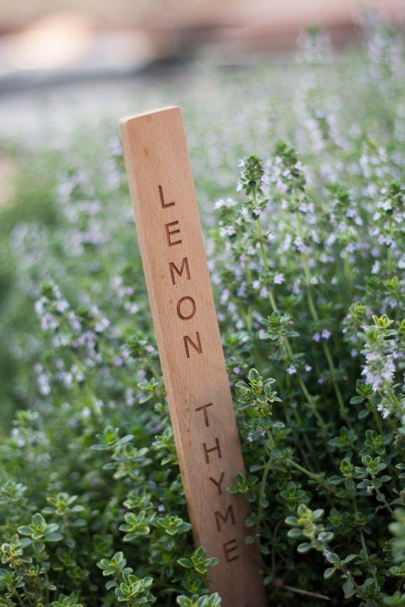 Wooden garden label stakes garden ftempo King soopers elitch gardens tickets