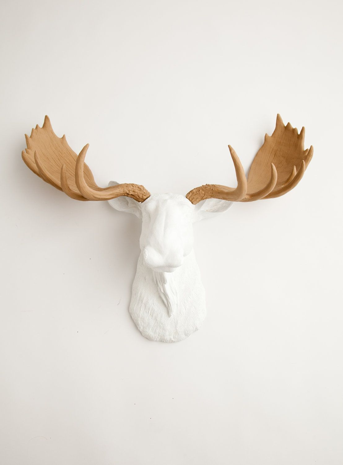 Faux Taxidermied The Adolpho White W Tan Antlers Resin Moose Head Moose Resin White Faux Taxidermy Chic Moose Head Faux Taxidermy Moose Animal