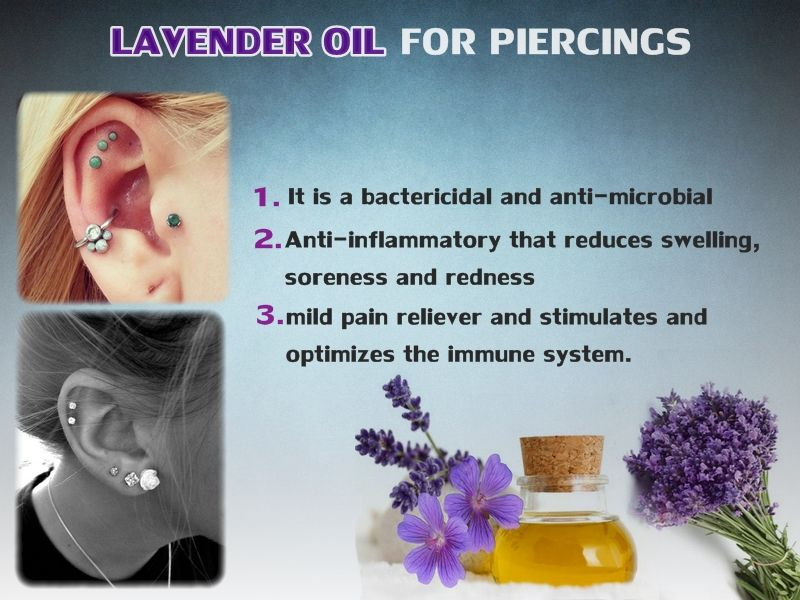 Lavender Oil For Piercings Healing Essential Oils Lavender Oil