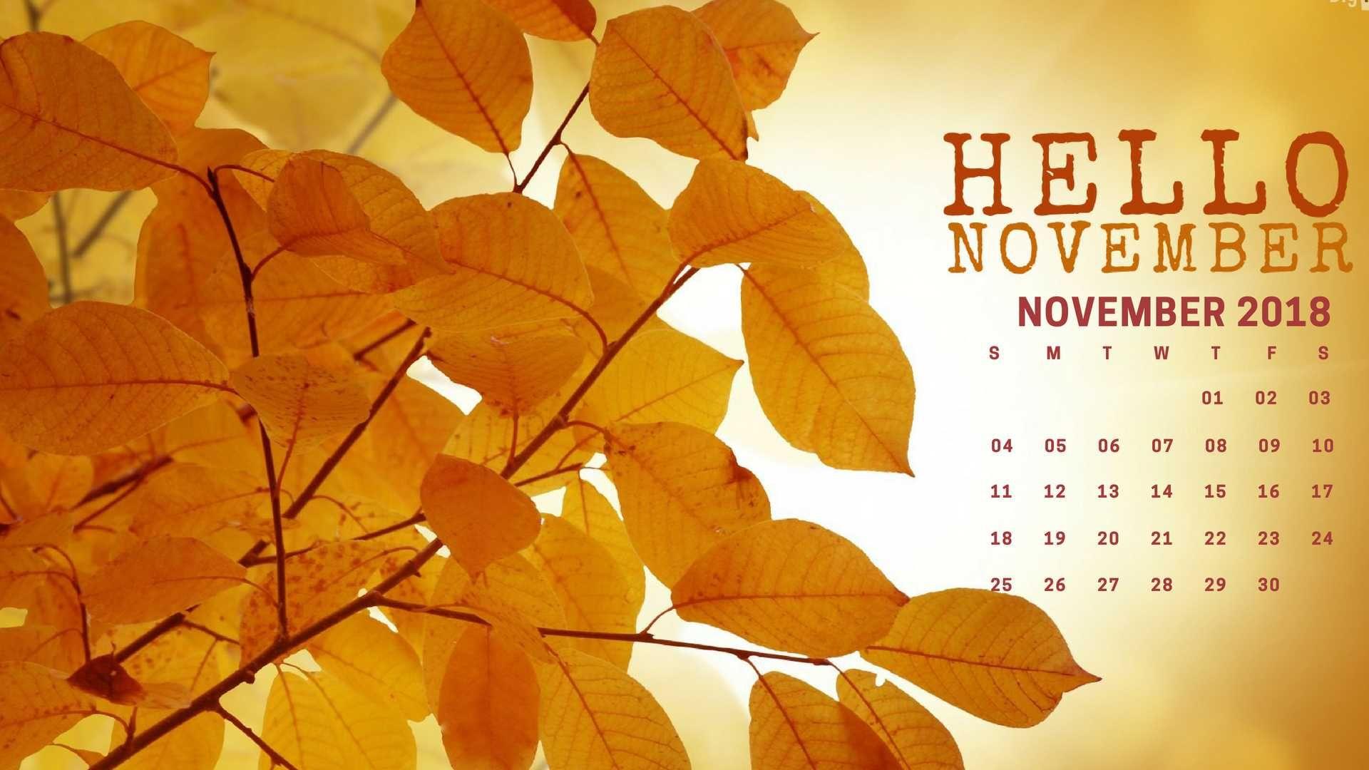 Hello November 2018 Calendar Wallpaper Desktop Background