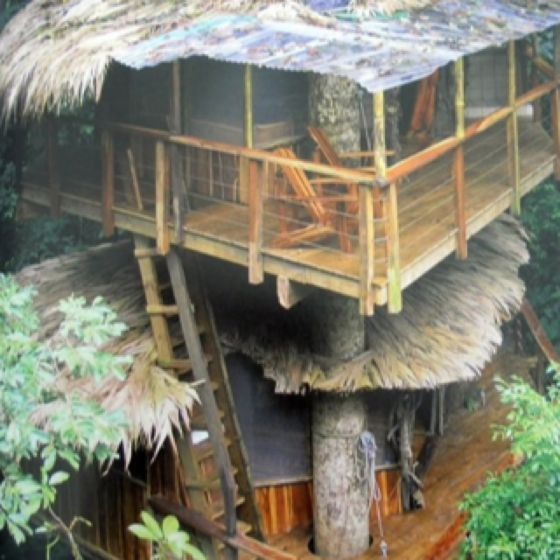 My vacation home in Costa Rica!!! A TREE HOUSE! Soo want one!
