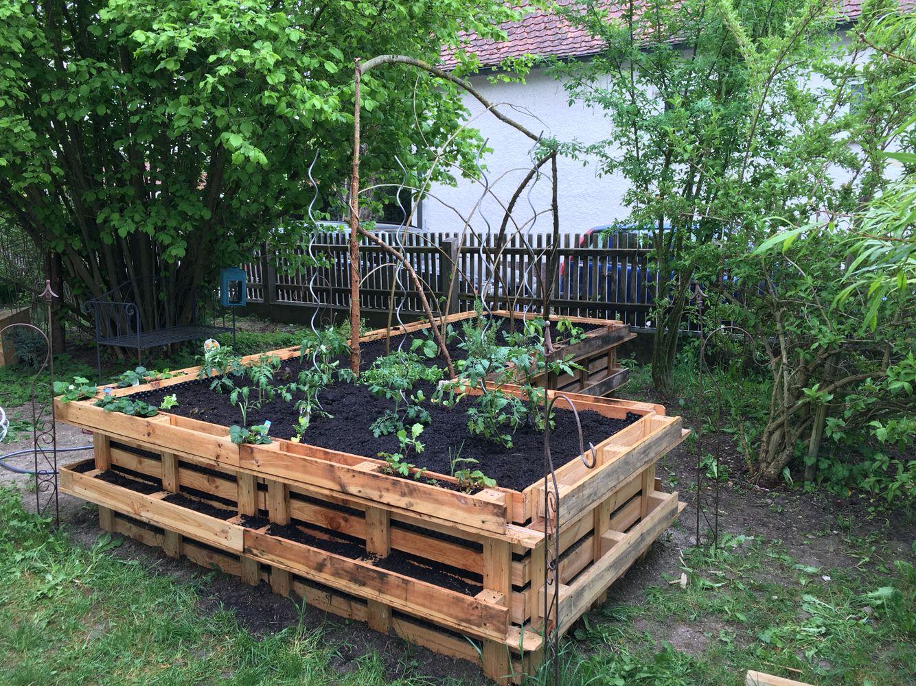 hochbeet mit tomaten und gurken und vielen mehr bepflanzt hochbeet aus paletten pinterest. Black Bedroom Furniture Sets. Home Design Ideas