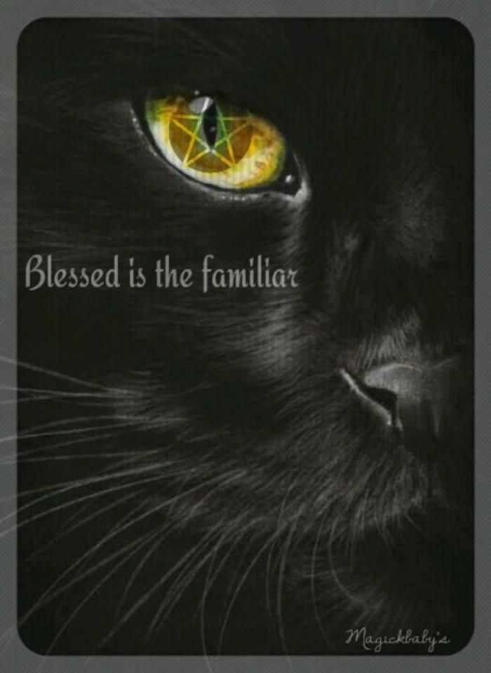 Blessed is the familiar    | Real Witchery | Pagan witch, Wicca