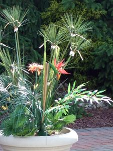 Superb Faux Flower Arrangements For Your Yard Some Great Ideas On Silk Flower  Smart.