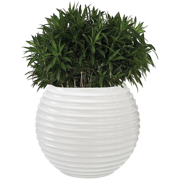 Yayoi Planter (1.470 DKK) ❤ liked on Polyvore featuring home, outdoors, outdoor decor, plants, fillers, fillers - plants, add-ons, decor and fiberglass planters