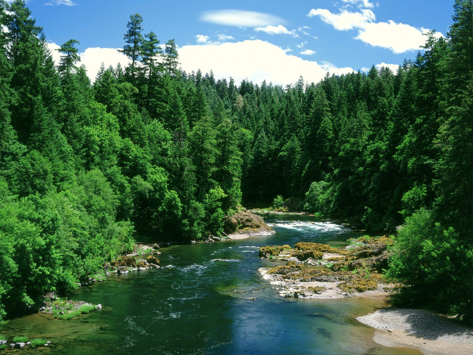 Umpqua River Douglas County Oregon Photo