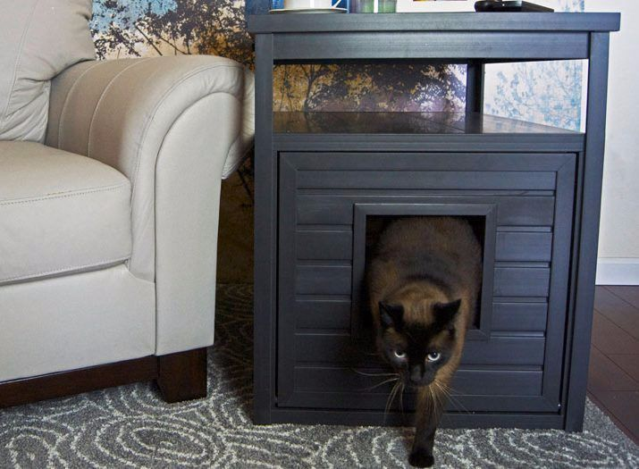 Ordinaire DOGIPOT® Cat Litter Box End Table