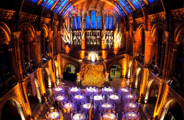 Wedding Hintze Hall Natural History Museum London That Architecture Staircase