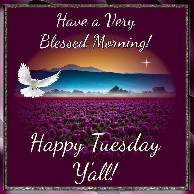 Have A Very Blessed Morning! Happy Tuesday Yall!