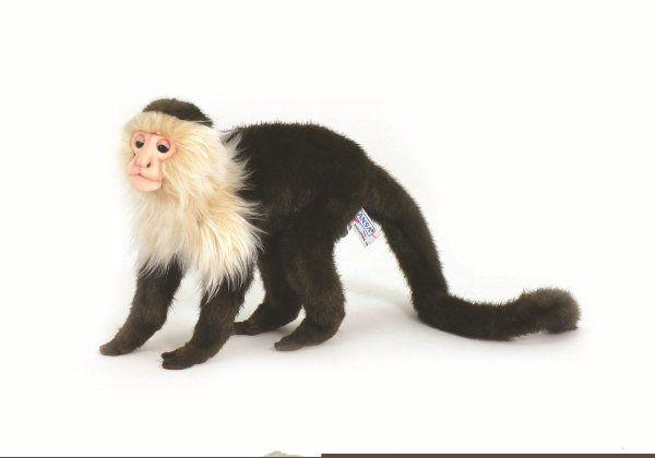 Hansa 5852 Monkey Capuchin Pet Monkey Plush Animals Pets