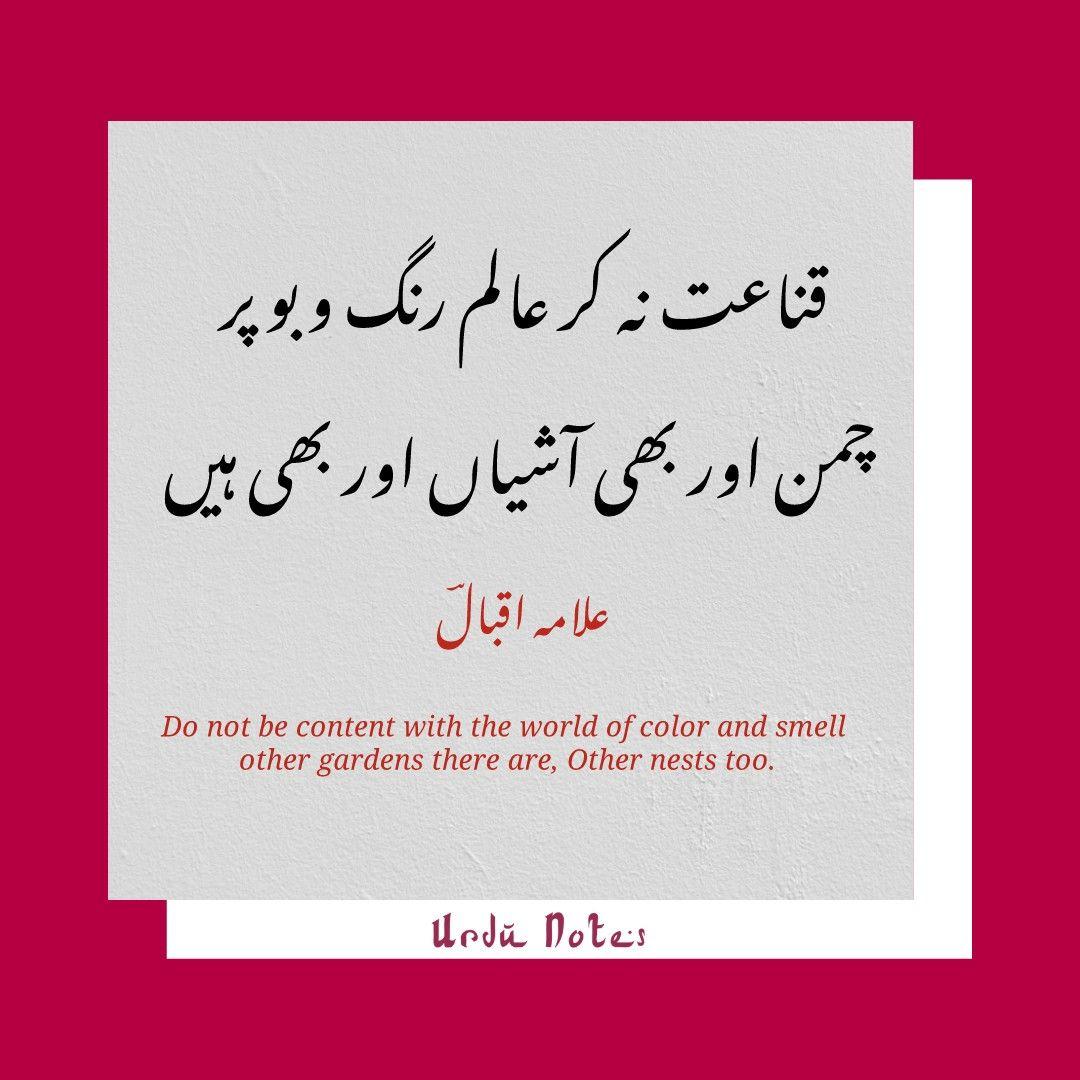 English Translation Urdu Worksheet Printable Worksheets And