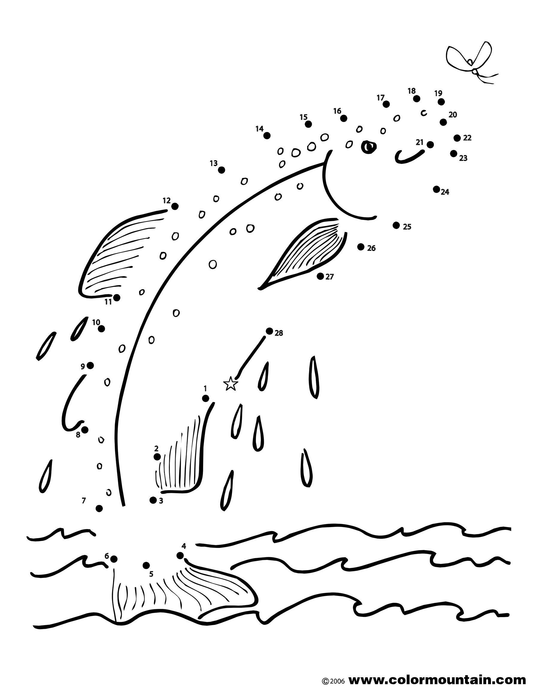 Free Trout Activity Coloring Page