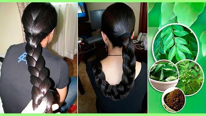 Plante qui accelere la pousse des cheveux