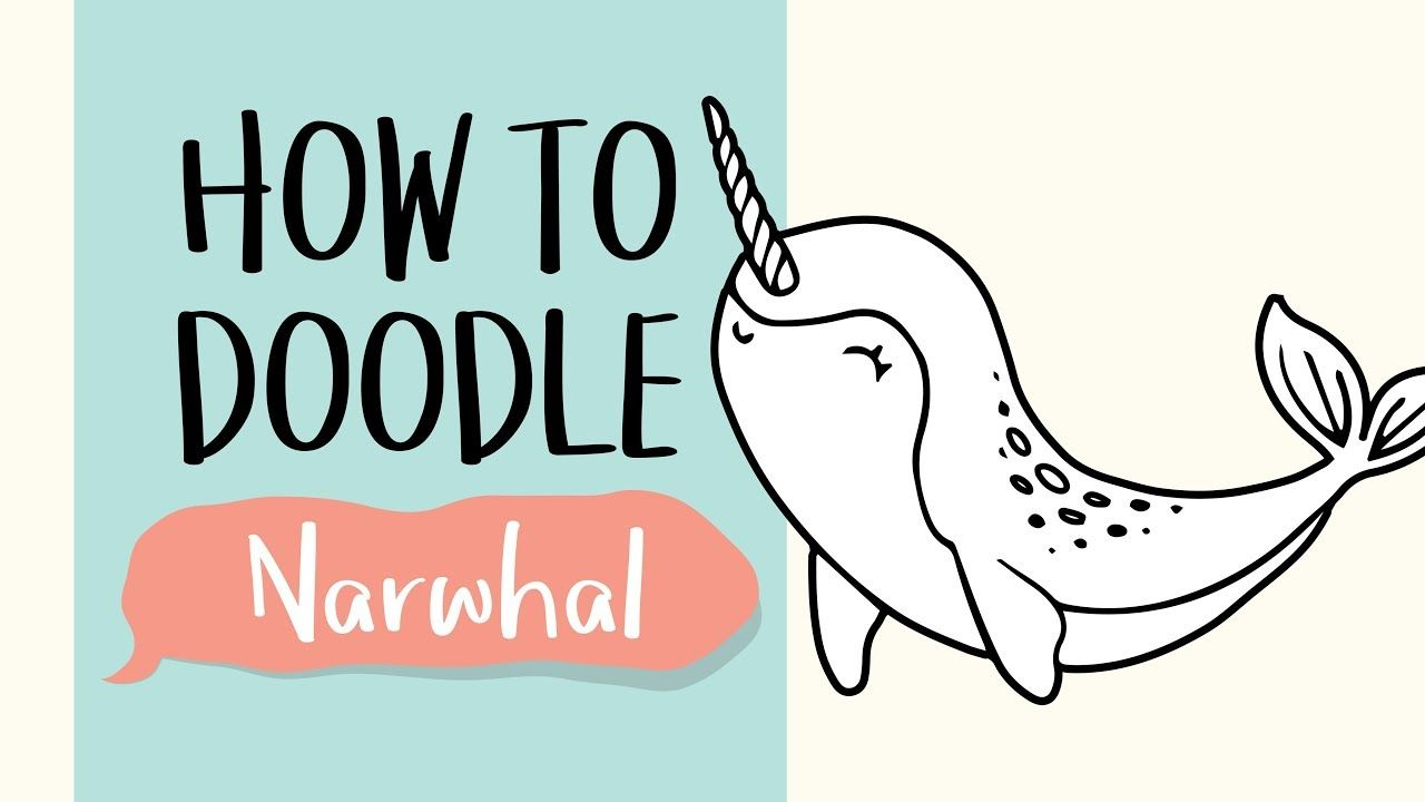 Image result for how to draw a narwhal easy Narwhal