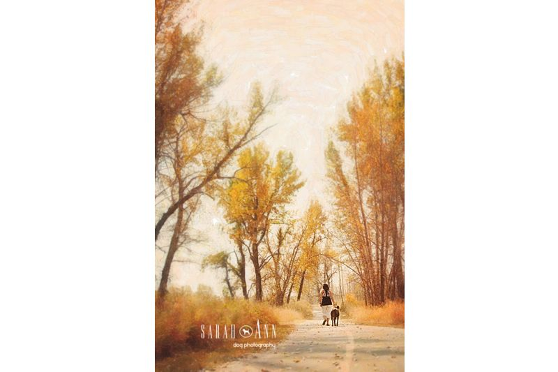 Woman walking dog sarahann dog photography calgary alberta canada woman walking dog sarahann dog photography calgary alberta canada greeting cards with this front available at heelingcards or at my etsy shop m4hsunfo