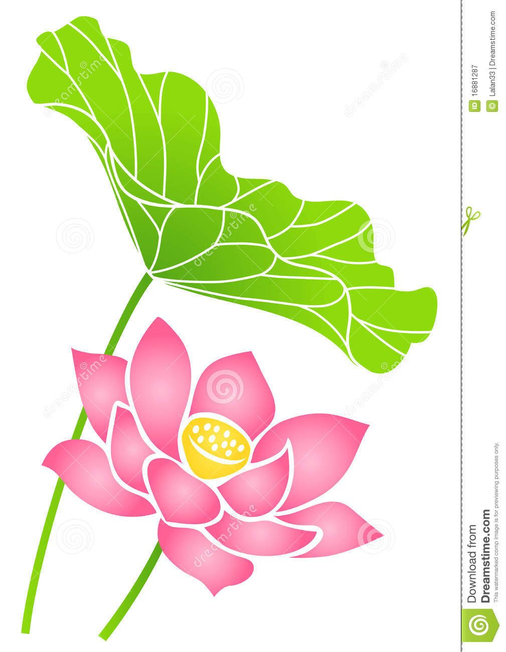 Free Lotus Vector Art 3672 Free Downloads Lotus Flower Vector Art