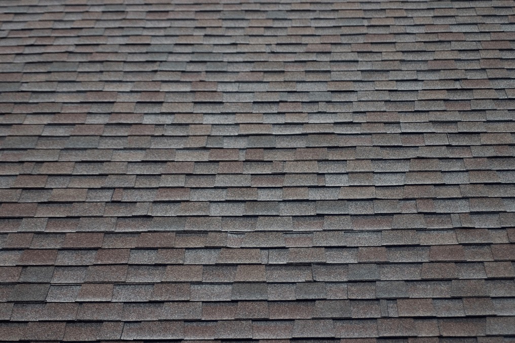 How To Shingle A Roof With Architectural Shingles In 2020 Asphalt Roof Shingles Roof Shingles Roof Architecture