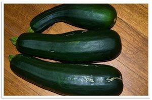 Zucchini a Day - Zucchini Fritter Recipe - picklebums.com