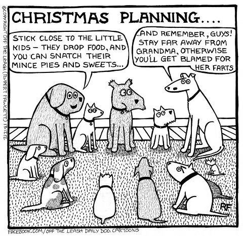 Christmas Planning Cartoon Dog Dog Comics Funny Dogs